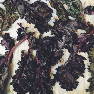 Low Carb Baked Kale